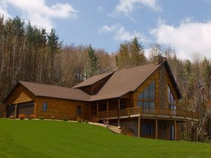 wooded area home property tree removal co
